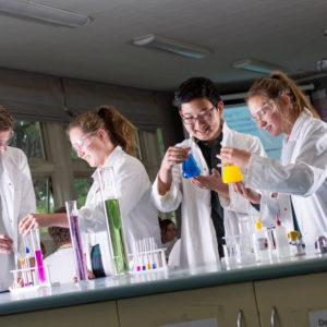 Schule in Neuseeland - Chemieunterricht