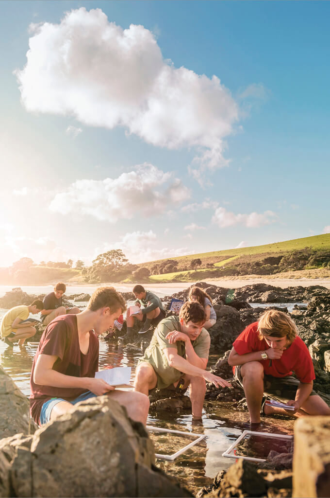 Schule in Neuseeland
