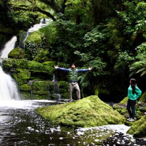 Warum Neuseeland - Wald2