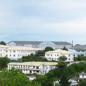 Basis - Napier Girls High School_1