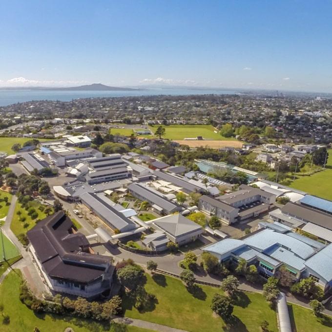 Basis - Rangitoto College