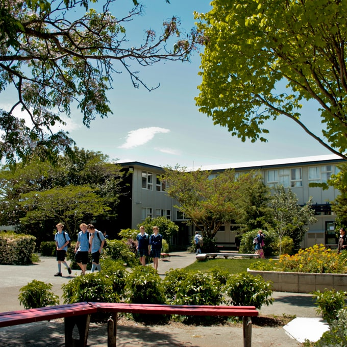 Basis - Taradale High School