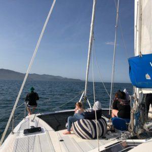 Abel Tasman Sailing Trip Nov 2019